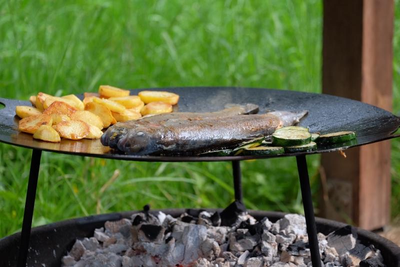 Petromax Grill- und Feuerschale fs 56